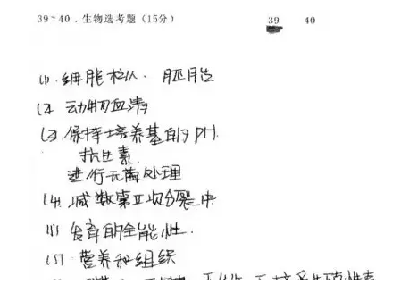 QQ图片20170627160651.png